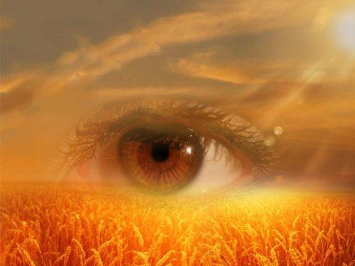 eye-718523_640